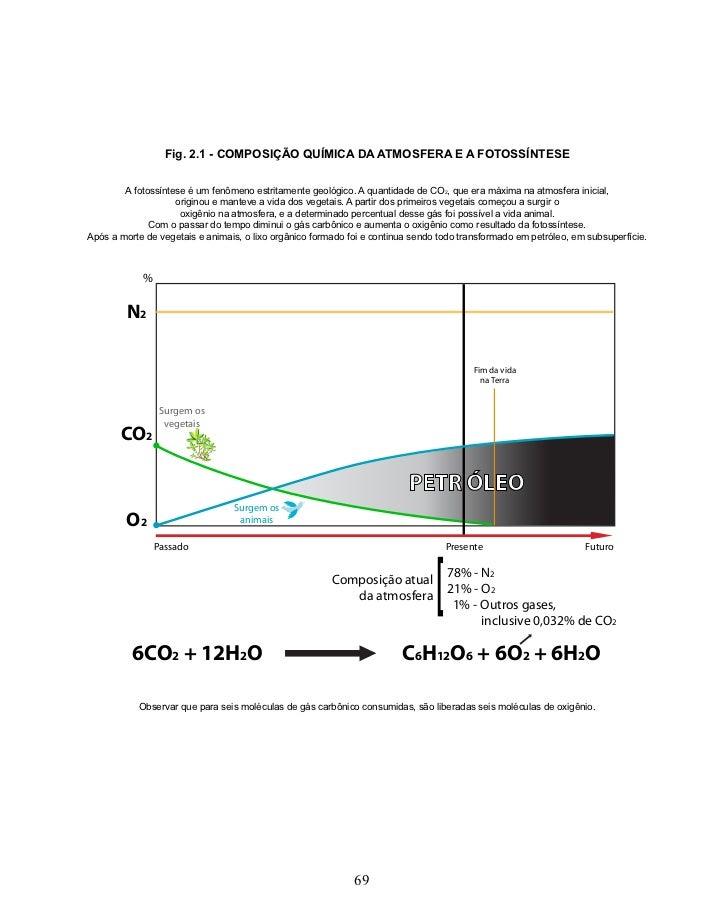 Fig. 2.1 - COMPOSIÇÃO QUÍMICA DA ATMOSFERA E A FOTOSSÍNTESE        A fotossíntese é um fenômeno estritamente geológico. A ...