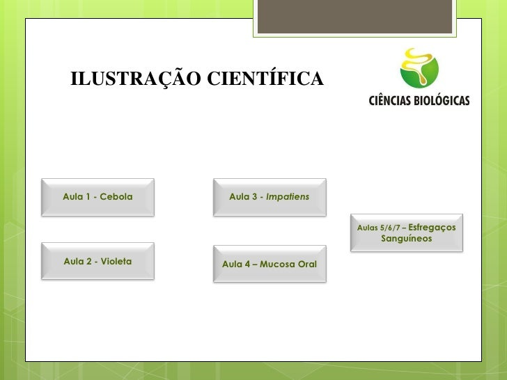 ILUSTRAÇÃO CIENTÍFICAAula 1 - Cebola     Aula 3 - Impatiens                                          Aulas 5/6/7 – Esfrega...