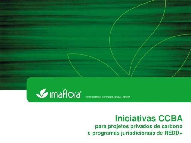 Iniciativas CCBA  para projetos privados de carbono  e programas jurisdicionais de REDD+
