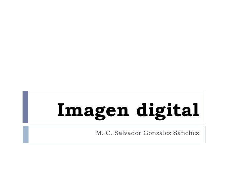 Imagen digital    M. C. Salvador González Sánchez