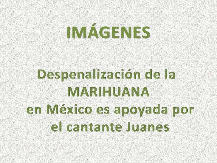 IMÁGENES <br />Despenalización de la <br />MARIHUANA<br /> en México es apoyada por<br /> el cantante Juanes<br />