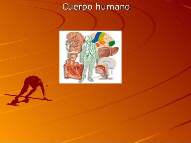 Cuerpo humanoCuerpo humano