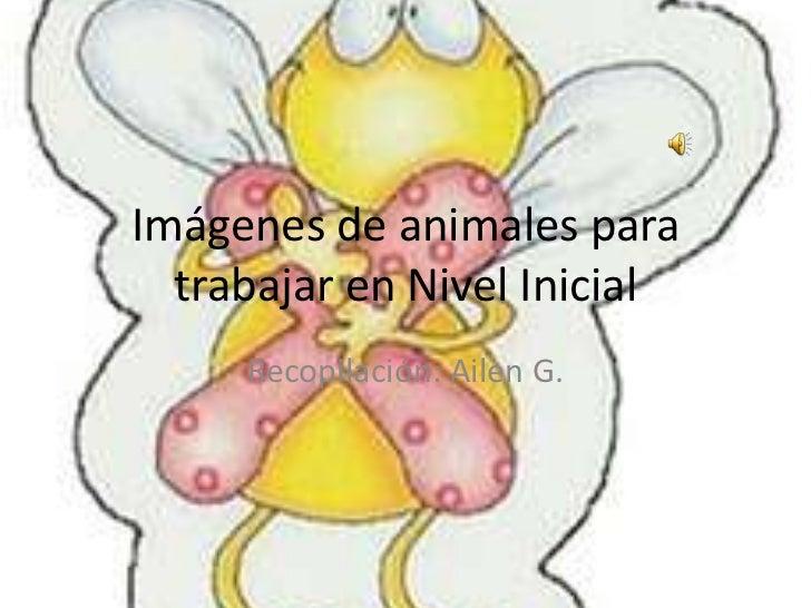 Imágenes de animales para  trabajar en Nivel Inicial     Recopilación: Ailen G.