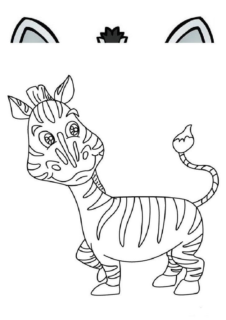 Imagenes cebras