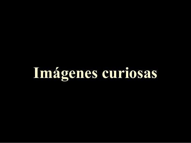 Imágenes curiosas