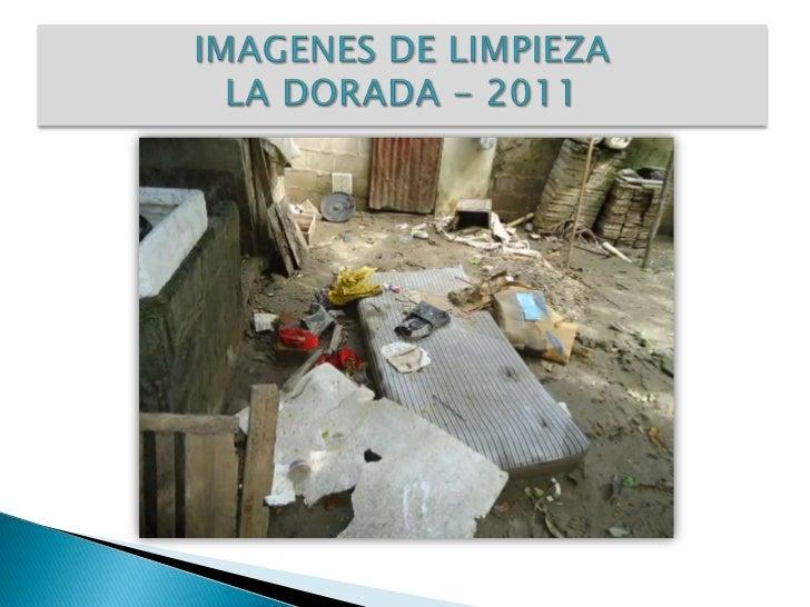 IMAGENES DE LIMPIEZA LA DORADA - 2011<br />