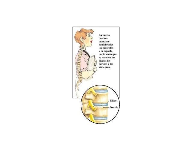 La buena postura mantiene equílibrados los músculos  y la espalda.  impidiendo que se lesionen los  discos.  los nervios y...