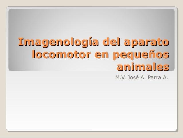 Imagenología del aparato  locomotor en pequeños                animales               M.V. José A. Parra A.