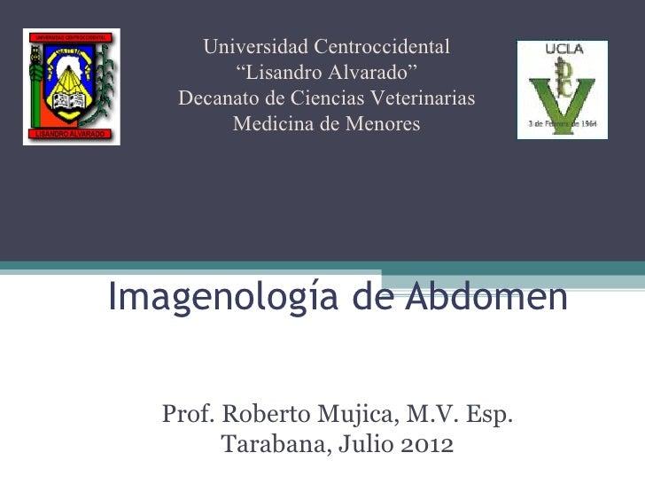 """Universidad Centroccidental        """"Lisandro Alvarado""""   Decanato de Ciencias Veterinarias        Medicina de MenoresImage..."""