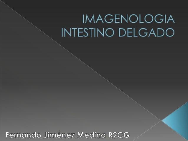  Longitud  Diámetro  Interposición de asas Benjamin T. Jarman, MD. Small Bowel Imaging, Surg Clin N Am 91 (2011) 109–125