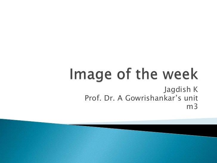 Image of the week<br />Jagdish K<br />Prof. Dr. A Gowrishankar's unit<br />m3<br />