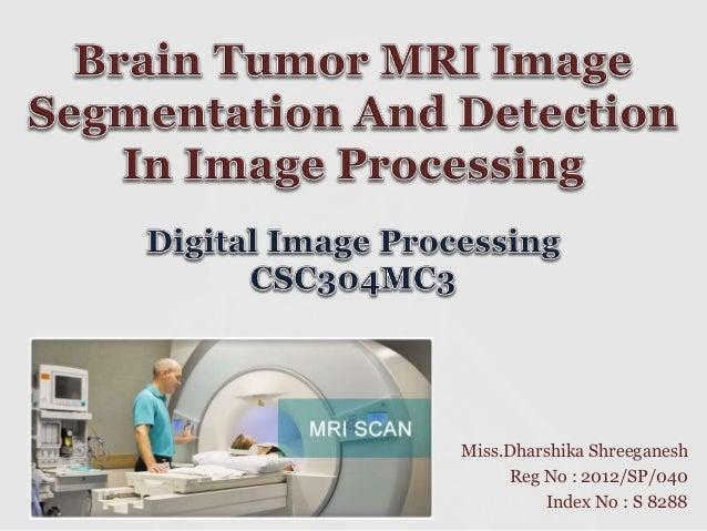 Brain Tumor Segmentation Projects and Research Topics