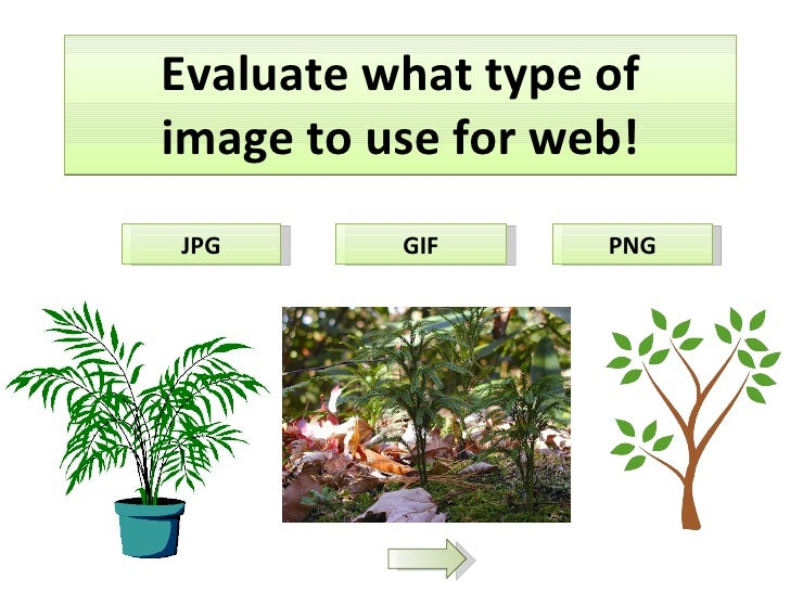 Evaluate what type of image to use for web! JPG GIF PNG