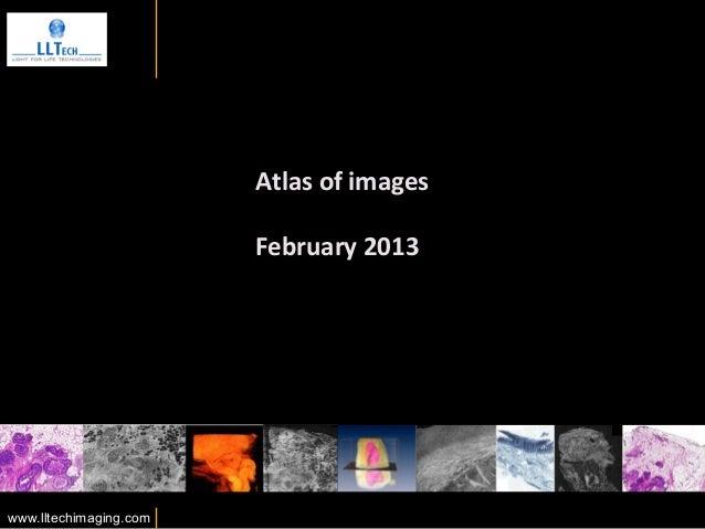 Atlas of images                                                      February 2013 www.lltechimaging.com      ...