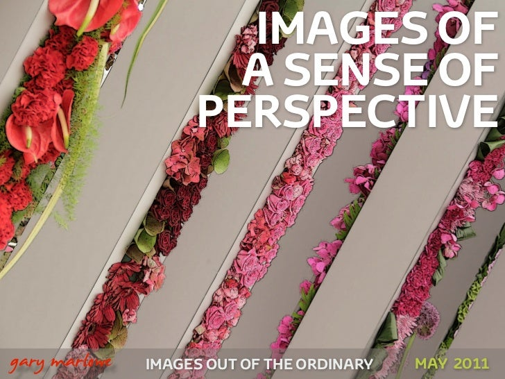 IMAGES OF                          A SENSE OF                        PERSPECTIVE!    gary marlowe   IMAGES OUT OF THE ORDI...