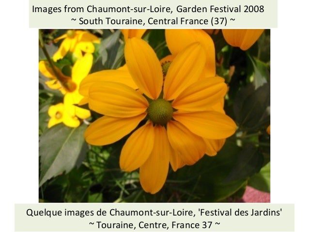 Visit: Social History of the Touraine: http://jimmcneill.wordpress.com/ Images from Chaumont-sur-Loire, Garden Festival 20...