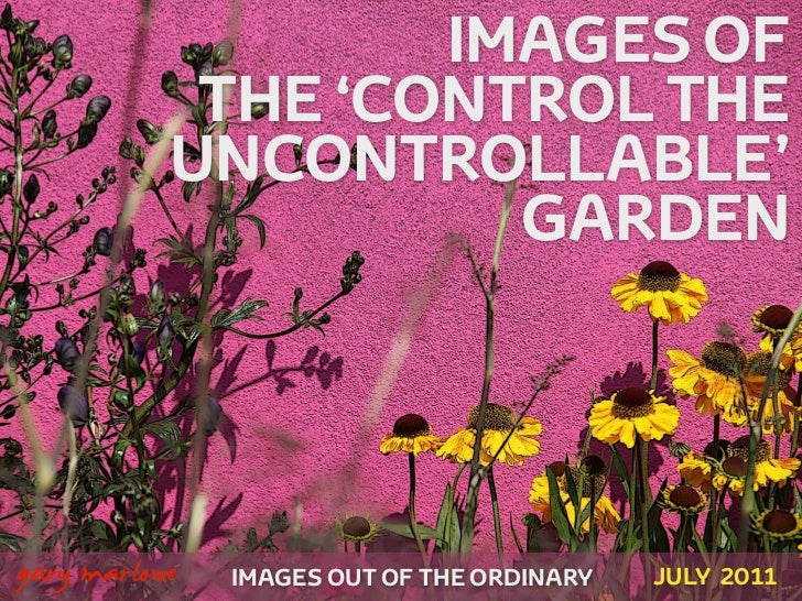 IMAGES OF                THE 'CONTROL THE               UNCONTROLLABLE'                         GARDEN!    gary marlowe   ...