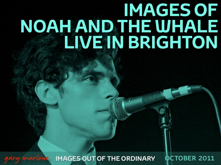 IMAGES OF        NOAH AND THE WHALE           LIVE IN BRIGHTON!    gary marlowe   IMAGES OUT OF THE ORDINARY   OCTOBER 2011