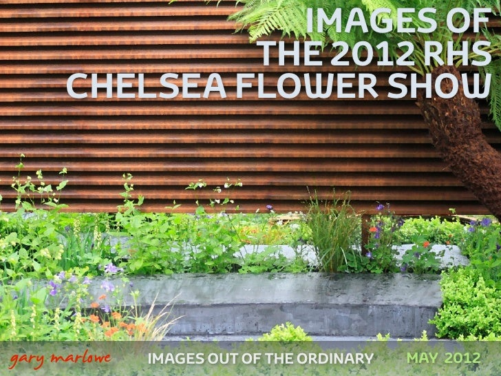 IMAGES OF                   THE 2012 RHS          CHELSEA FLOWER SHOW    gary marlowe   IMAGES OUT OF THE ORDINARY   MAY ...