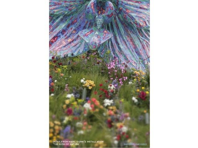 Chelsea flower show images 2013