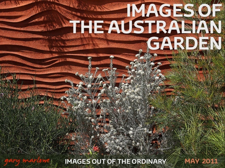 IMAGES OF                    THE AUSTRALIAN                           GARDEN!    gary marlowe   IMAGES OUT OF THE ORDINARY...