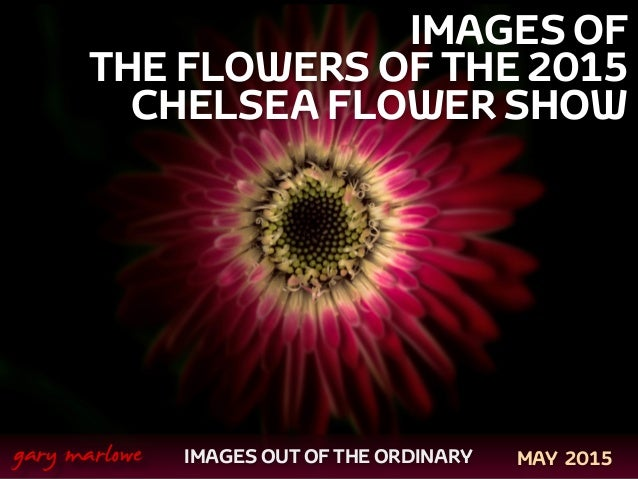 IMAGES OF THE FLOWERS OF THE 2015 CHELSEA FLOWER SHOW ! ! IMAGES OUT OF THE ORDINARY  gary marlowe MAY 2015