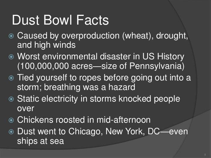 10 facts on the great depression The great depression, fdr, the rise of hitler and jazz also, my grandma was born in the thirties and she was pretty much the most awesome person ever, so there's that the failed experiment that was prohibition finally ended in 1933 and people could sell beer and liquor without fear often times.