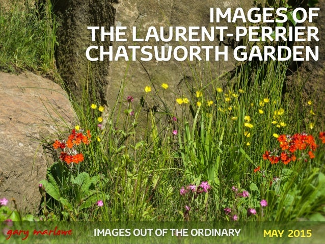 IMAGES OF THE LAURENT-PERRIER CHATSWORTH GARDEN ! ! IMAGES OUT OF THE ORDINARY 