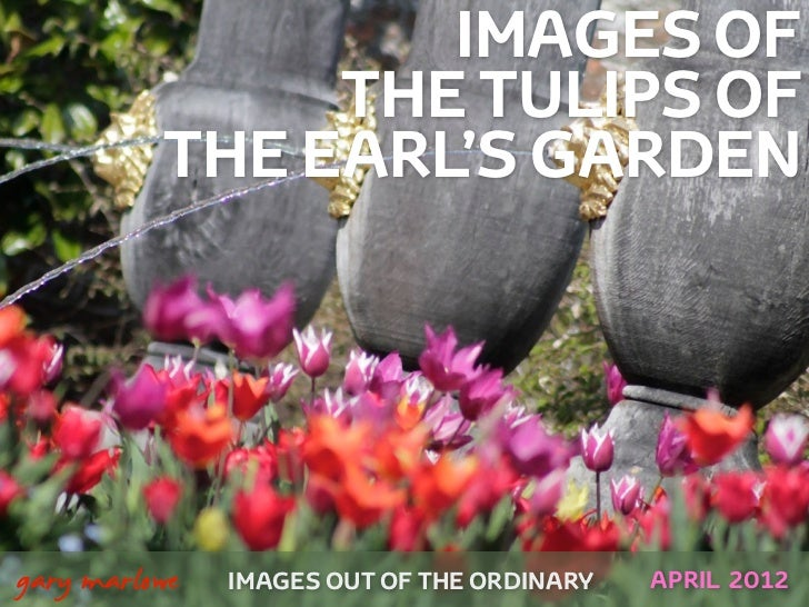IMAGES OF                   THE TULIPS OF              THE EARL'S GARDEN    gary marlowe   IMAGES OUT OF THE ORDINARY   A...