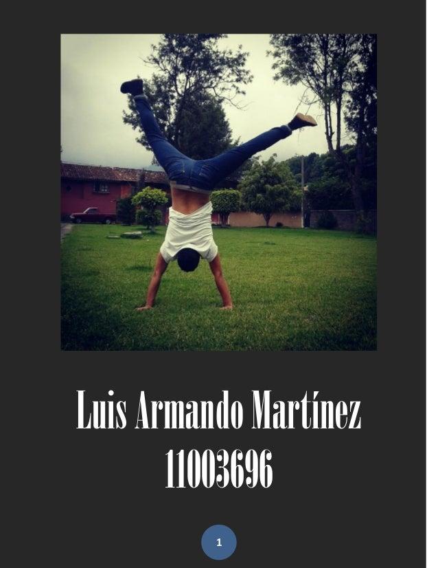 Luis Armando Martínez       11003696          1