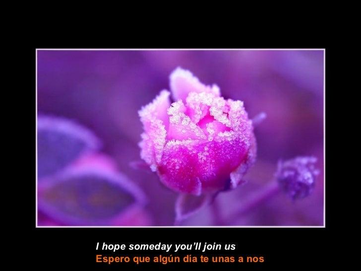 I hope someday you'll join usEspero que algún día te unas a nos