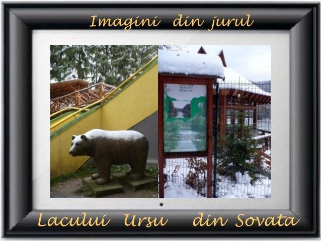 Imagini     din jurulLacului   Ursu     din Sovata