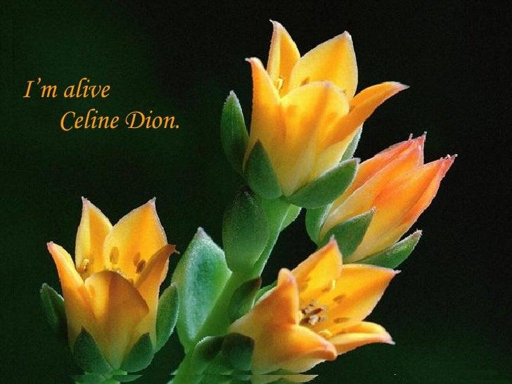 I'm alive  Celine   Dion.