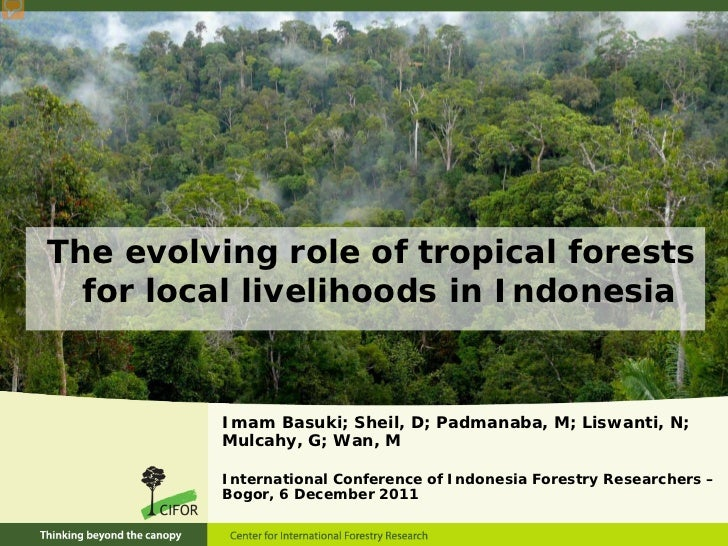 The evolving role of tropical forests  for local livelihoods in Indonesia          Imam Basuki; Sheil, D; Padmanaba, M; Li...