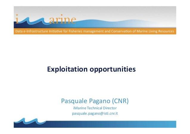 Exploitation opportunities  Pasquale Pagano (CNR) iMarine Technical Director pasquale.pagano@isti.cnr.it
