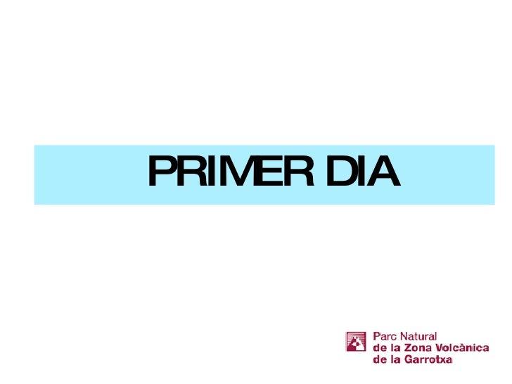 <ul><li>PRIMER DIA </li></ul>