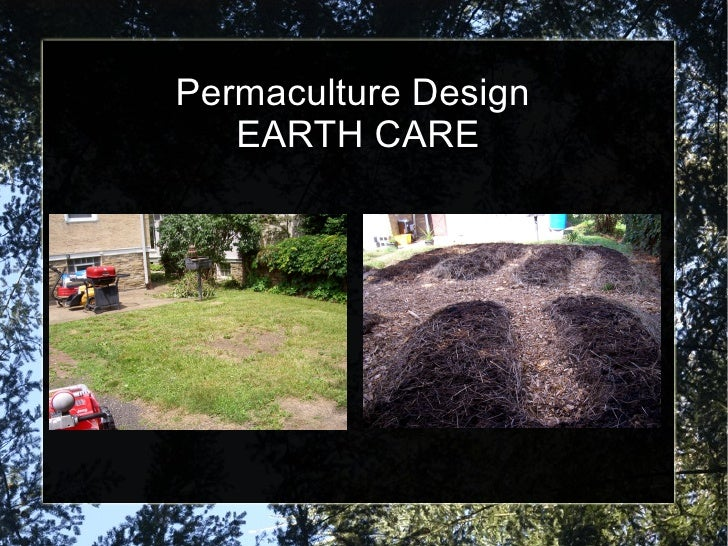 permaculture and edible landscape design
