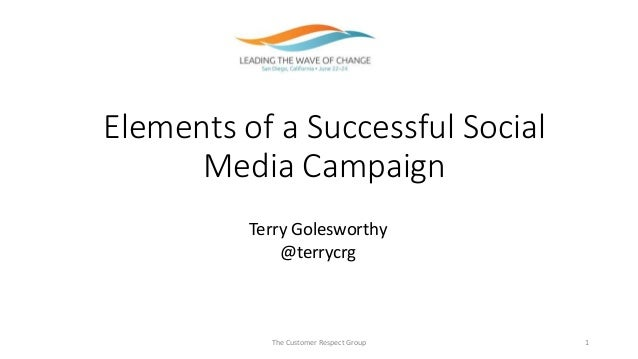 Elements of a Successful Social Media Campaign The Customer Respect Group 1 Terry Golesworthy @terrycrg