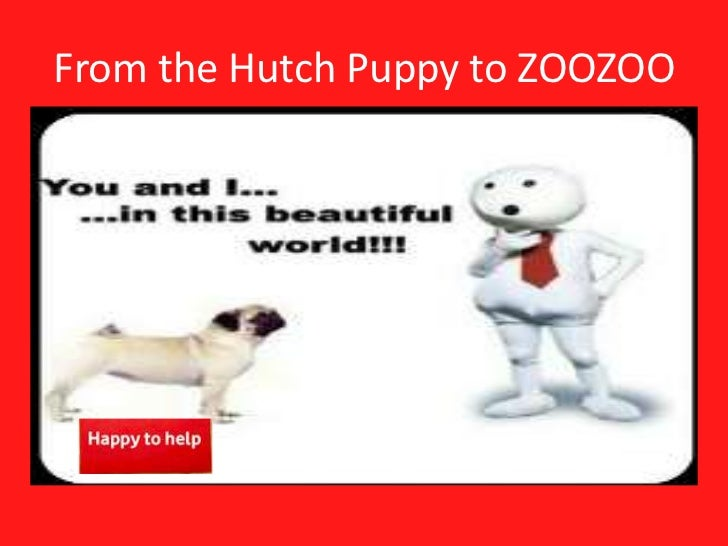 From the Hutch Puppy to ZOOZOO