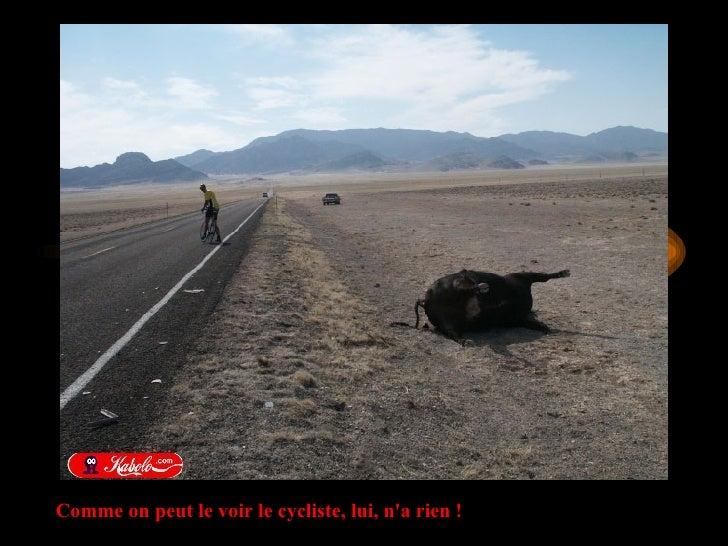 Comme on peut le voir le cycliste, lui, n'a rien !