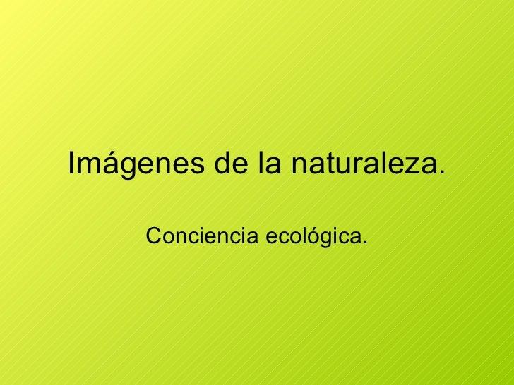 Imágenes de la naturaleza. Conciencia ecológica.