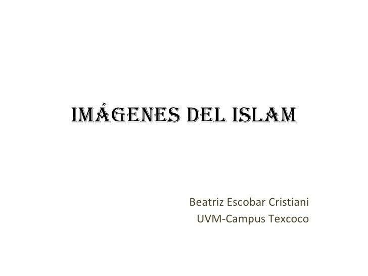 Imágenes del Islam Beatriz Escobar Cristiani UVM-Campus Texcoco
