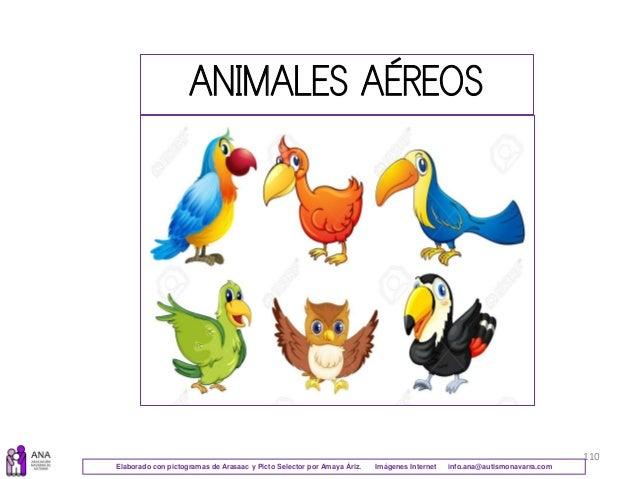 110 ANIMALES AÉREOS Elaborado con pictogramas de Arasaac y Picto Selector por Amaya Áriz. Imágenes Internet info.ana@autis...