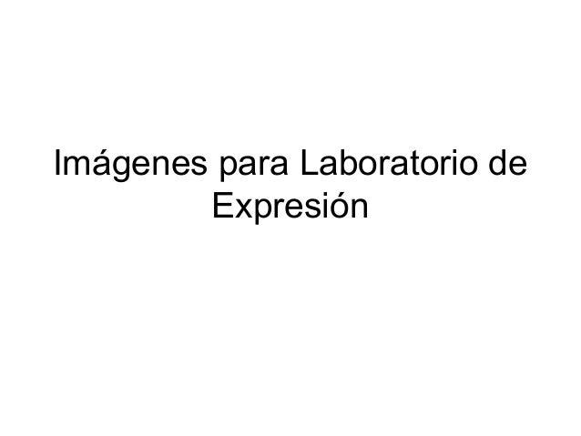 Imágenes para Laboratorio de Expresión