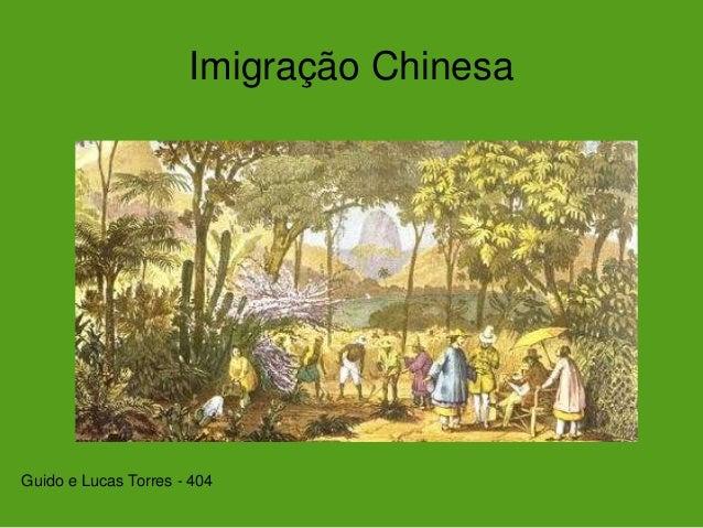 Imigração Chinesa Guido e Lucas Torres - 404
