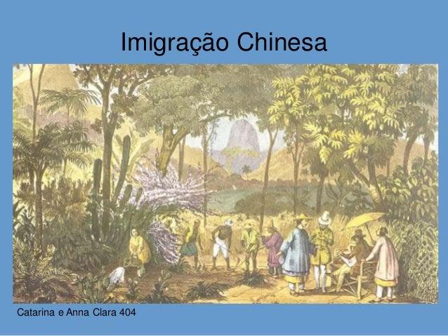 Imigração Chinesa Catarina e Anna Clara 404