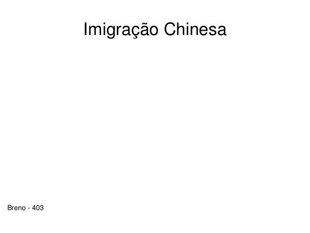 Imigração Chinesa Breno - 403