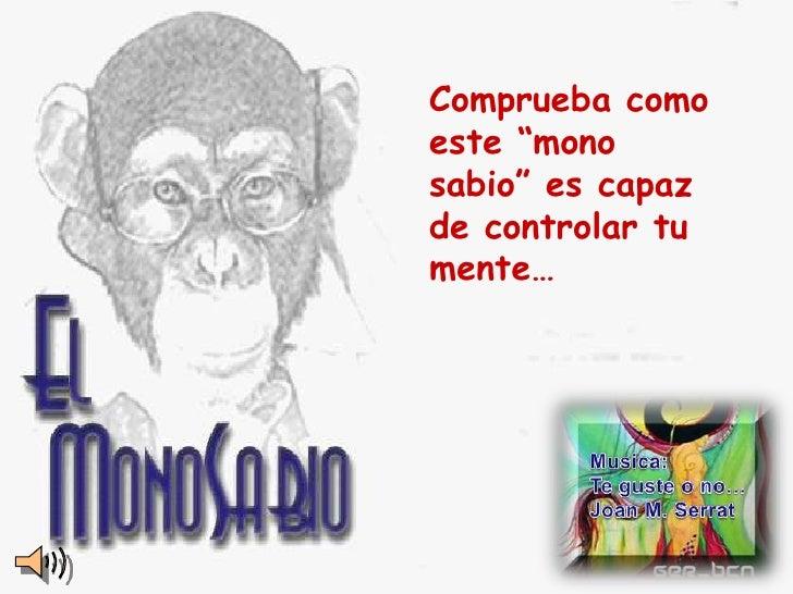 """Comprueba como este """"mono sabio"""" es capaz de controlar tu mente…"""