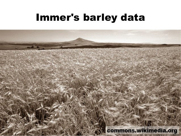 Immer's barley data