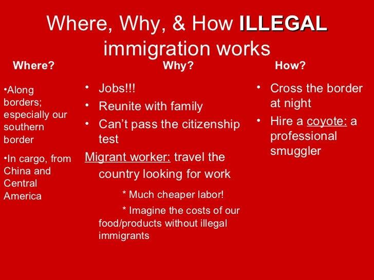 pro and con immigration essay